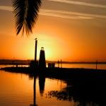 Florida's Hot Season