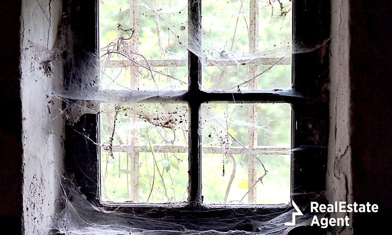 It's Fall, And That Means Cobwebs In Homes Across The USA!