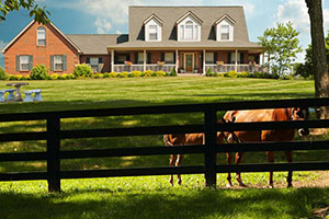 Horse farm real estate agent template