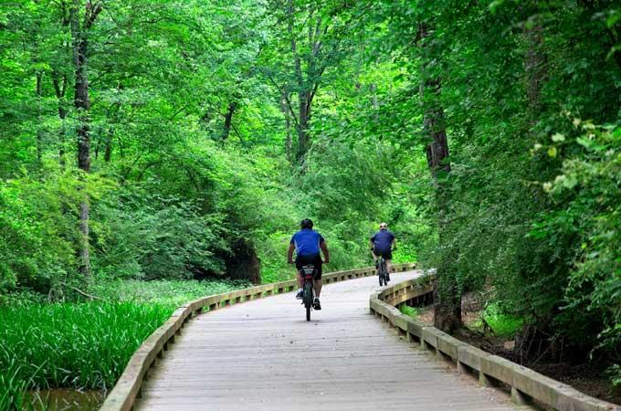 The Big Creek Greenway - Alpharetta GA