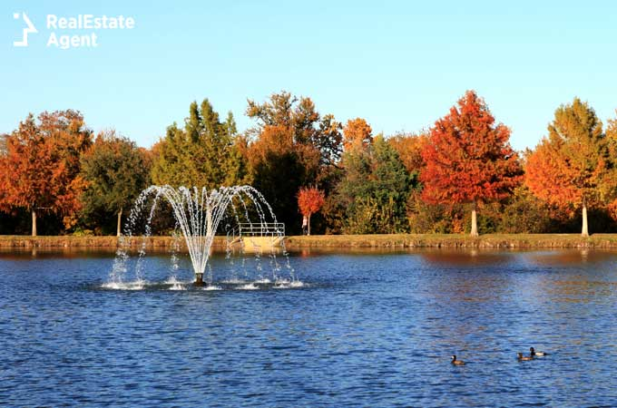 park pond in Plano TX